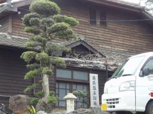 6622-Wakihama onsen yokujyo Otasshanyu-1