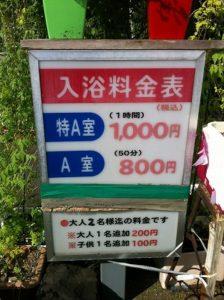 4408-Kazokuyu Shinmachi onsen-4